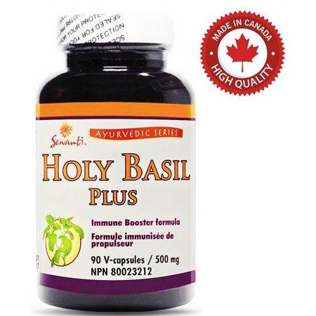 Holy Basil Plus- odporność