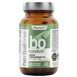 Borellvit - zakażenia, borelioza,