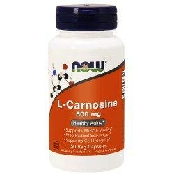 L-Carnosine -przeciwko starzenoiu, wydolność organizmu, serce, nerki , mózg